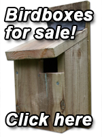 Birdboxes For Sale