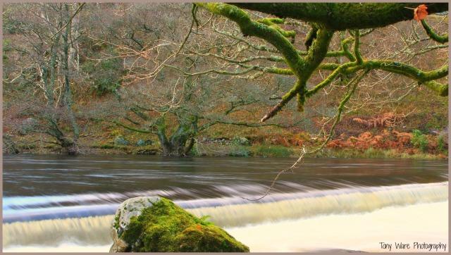 THE RIVER ELAN